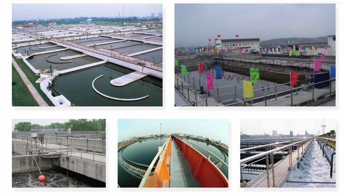 Municipal Project