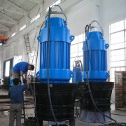 Submersible Axial or Mixed-Flow Pump 2